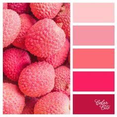 Paletas Colorbits #009