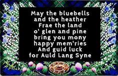 Bluebells and Heather Scottish Quotes, Scottish Gaelic, Scottish Clans, Scottish Tartans, Scottish Highlands, Scottish Toast, Scottish English, Scottish Thistle, Scottish New Year