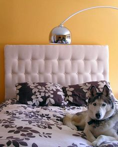 This project took 6 hours to complete and for under 100 bucks is the best tufted headboard I've ever seen.  It requires a little more supplies like foam, plywood, a few bolts and some fabric but the resulting piece totally worth it. Just look at it! It resembles very well a really expensive leather couch, and the contrast is marvelous.{found on apartmenttherapy}.