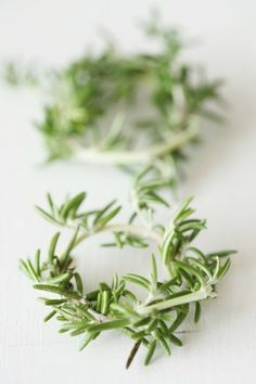 Rosemary bred on Moja Moja, there is a different use than cooking ♪ Diy Esstisch, Chopstick Rest, Herb Garden, Green Leaves, Flower Decorations, Food Art, Flower Arrangements, Plant Based, Wedding Flowers