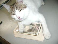 この金は・・・・絶対渡さへん!