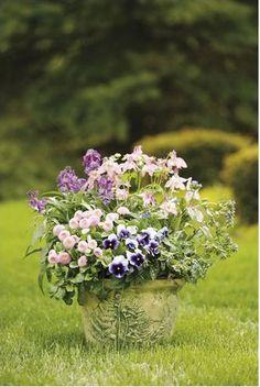 Spring Beauty Recipe Shade Container Recipe | thegardengeeks