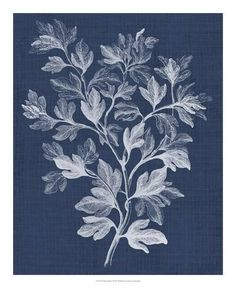 Foliage Chintz I Giclee Print by Vision Studio at Art.com