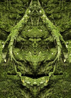 Medicine Man in the Moss at Rock City by Whale Man, via Flickr