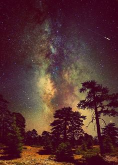 <3us underneath the starry starry night, just you & i my beloved<3
