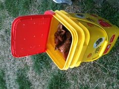 Homemade Compost Bin.   My small homemade compost bucket made from a 35lbs cat liter container. I just drilled small 5/32 holes about 1.5 to 2 inches apart! I shake it around ever few days, add worms that my son and I find! It's looking great and didn't cost a thing since I have cats!