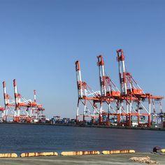 キリンが海辺でならんでいるようなガントリークレーン 神戸 ポートアイランド。 A gantry crane like a giraffe by the seaside in port island Kobe.