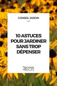 Comme jardinier sans trop dépenser ? Voici 10 astuces simples et faciles pour aménager son jardin sans se ruiner.