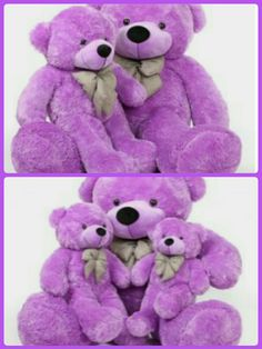 Teddy day special wallpaper teddy day quotes pinterest bear purple stuff stuffed animals violets bears bear pansies altavistaventures Images