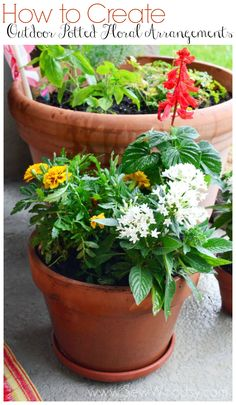 Hot to create potted plant arrangements. I love these ideas