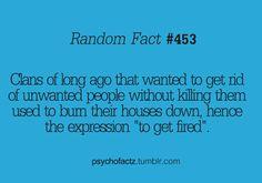 random fact # 453