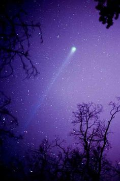 Comet Hyakutake//1996 -- all i can think of is the scene in a walk to remember. 'ah. nature's miracles.' hahaa