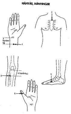 Akupunktura Acupressure, Massage, Health Fitness, Workout, Health, Work Outs, Health And Fitness, Massage Therapy, Fitness