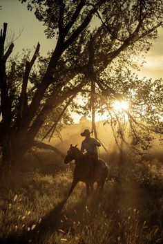 Cowboy Horse, Cowboy Art, Western Quotes, Country Quotes, Cowboy Photography, Sun Aesthetic, Cowboys And Angels, Band On The Run, Cowboy Pictures