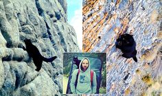 Meet the rock climbing domestic cat that scales mountains