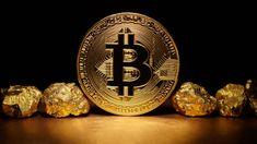 Bitcoin (BTC) Bitcoin Wallet, Buy Bitcoin, Bitcoin Price, Bitcoin Miner, Cryptocurrency News, Investors, Blockchain, Accounting, Coins