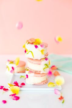 » Floral Macaron Ice
