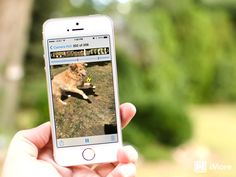 How to record and share slow motion videos on the iPhone 5s, including Instagram! - http://www.aivanet.com/2013/09/how-to-record-and-share-slow-motion-videos-on-the-iphone-5s-including-instagram/