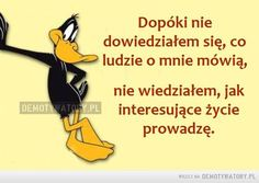 Dopóki nie wiedziałem... Funny Lyrics, Words Quotes, Sayings, Little My, Just Smile, More Than Words, Man Humor, Motto, Memes