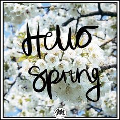 Wreszcie wiosna <3 Hello Spring #quote Hello Spring, Place Cards, Place Card Holders, Quote, Quotation, Qoutes, Quotes