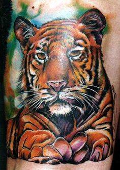 tiger tattoos | ... , gallery, symbols, tiger tattoo tattoo free download - tattoo prince