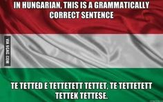 Humor in Hungarian Funny Photos, Best Funny Pictures, Bizarre Pictures, Jorge Ben, Grammatically Correct, Taj Mahal, Funny Jokes, Hilarious, Bad Memes