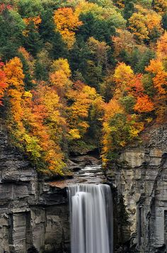 Taughannock Falls State Park's namesake waterfall is one of the outstanding natural attractions of the Northeast. Taughannock Falls plunges 215 feet, New York All Nature, Amazing Nature, Places To Travel, Places To See, Beautiful World, Beautiful Places, Parque Natural, Fall Pictures, Beautiful Waterfalls