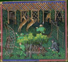 Le livre de chasse, folio 103 ci devise à faire haies pour toutes bêtes