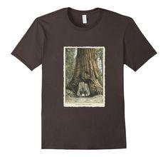 Men's Vintage Redwood Forest T Shirt, California Redwoods Trees 2XL Asphalt