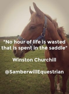 Welcome to Samberwill Equestrian We have a great range of horse wear, rider wear, grooming items, horse rugs and horse and pony related gifts. Delivery within 2 - 3 days. Rodeo Quotes, Equestrian Quotes, Equestrian Outfits, Equestrian Fashion, Equestrian Style, Inspirational Horse Quotes, Westerns, Horse Riding Quotes, Horse Girl Quotes
