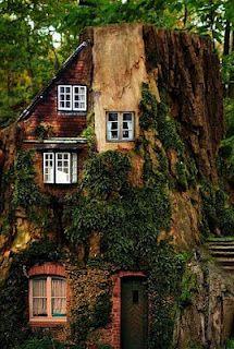 En Güzel Ağaç Ev Örnekleri   -1. Bölüm-