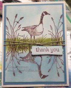 reflection tech card 12, su card, card wetland, masculin card, card 2014
