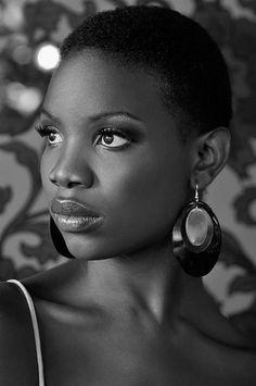 Black beauty ,