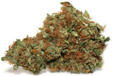 RATING: 9.2 TYPE:Sativa Dominant Hybrid THC:THC percentage is usually between 18% and 26%. CBD:.02-.1% LINEAGE:Unknown APPEARANCE:Chemdawg has an amazing abundance of frosty white trichomes. Its pistils appear almost rope like and orangish red. The buds are very sticky and you can visually see its potency. SMELL:Chemdawg has a lemon pine scent with sour and spicy undertones. BEST FOR TREATING:Stress, PainandAppetite. CREATED FEELINGS:Chemdawg creates a nice uplifting yet rel...