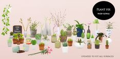 Sims 4 CC's - The Best: Plants by MioSims