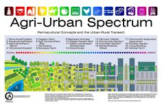 AGRI-URBAN SPECTRUM: Designed by Stephen's Planning, this too-colourful but clever infographic illustrates different sustainable agricultural methods at various points on the rural-urban continuum. Click through image for detailed list of garden types.