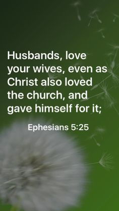 Husbands, love your wives, even as Christ also loved the church, and gave himself for it;  Ephesians 5:25