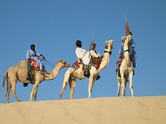 Tuaregs on camels