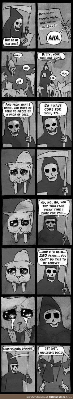Kitty is still alive