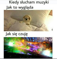 That's True Memes Weekend Humor, Monday Humor, Wtf Funny, Funny Cute, Funny Images, Funny Pictures, Polish Memes, Funny Mems, Mood Songs