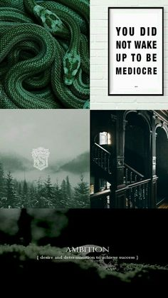 "Love the ""you did not wake up to be mediocre"" and how often it's applied to slytherin I think it really fits Slytherin House, Slytherin Pride, Slytherin Aesthetic, Harry Potter Aesthetic, Ravenclaw, Harry Potter Houses, Harry Potter Fandom, Harry Potter World, Harry Potter Memes"