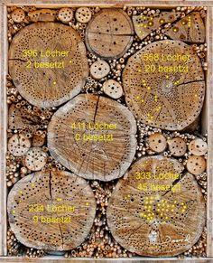 Insektenhotel Nisthilfe Insektennisthilfe Stammscheibe Baumscheibe Bohrungen