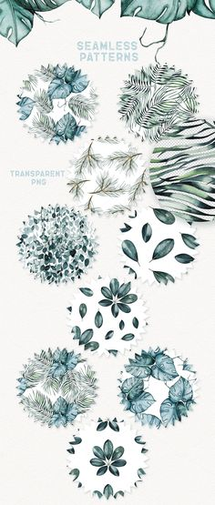 Watercolor Plants by Spasibenko Art on @creativemarket