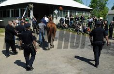 California Chrome (May 20, 2014) Kentucky Derby and Preakness winner California Chrome, led by asst. trainer Alan Sherman, arrives at Belmont. Rick Samuels Photo