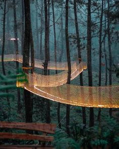 Orchid Forest, Bandung Indonesia - Mongolian Outdoor Travel - Mongolian tailor made trip Landscape Architecture, Landscape Design, Sketch Architecture, Hotel Architecture, Green Landscape, Forest Resort, Forest Hotel, Places To Travel, Places To Visit