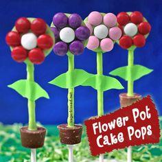 DIY Cake Pop Recipe : How to Make Flower Pot Cake Pops