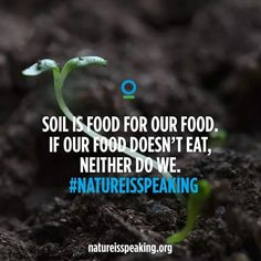 Soil is food