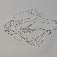 Poisson à l'unité: Poisson suspendu pièce mobile: crochet fils de pêche Dorade N°1:41x24x12 cm (disponible) Dorade N°2:41...