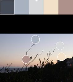 Amarillo claro y azul cielo(8): F2E0C9/D6D8D9 Paleta y puntos de color