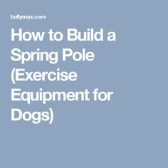 How to Build a Spring Pole (Exercise Equipment for Dogs)